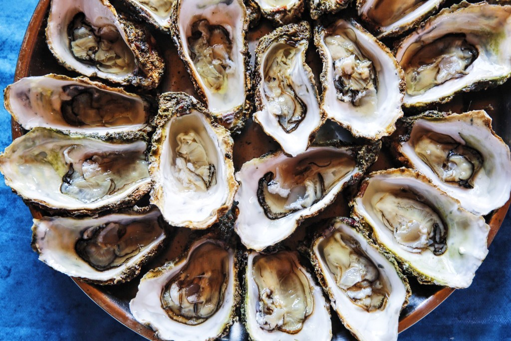 Oysters in Spain